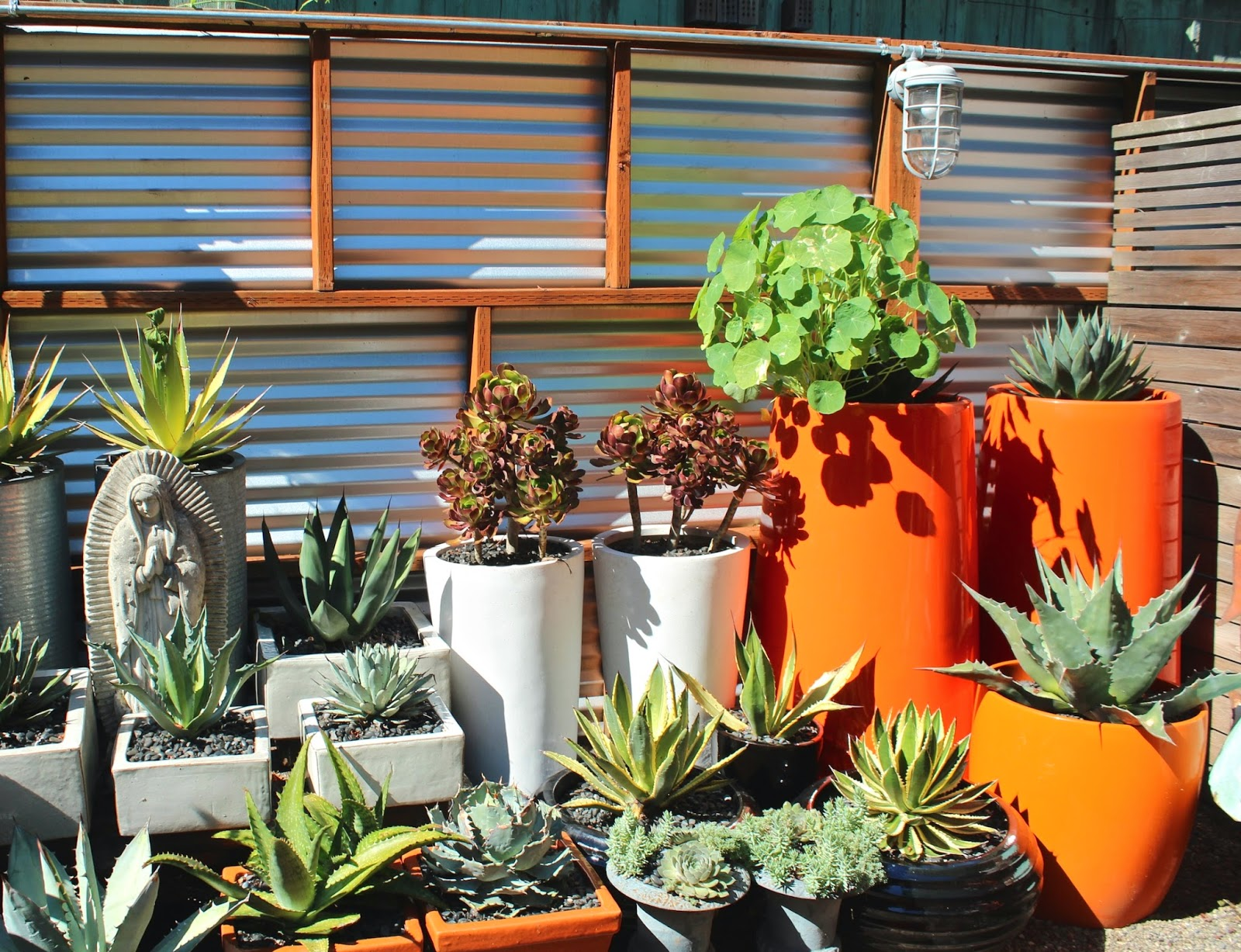 Sharing nature 39 s garden hot art and design spice up for Garden pots portland