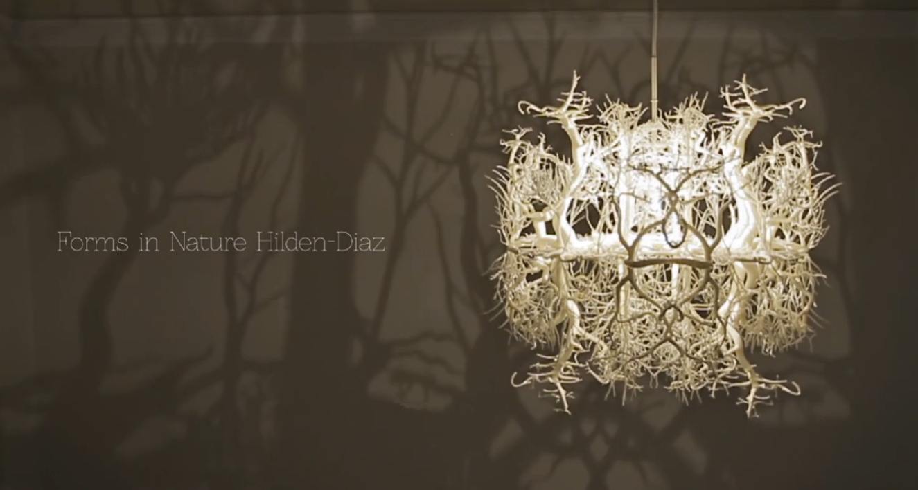 Chandelier Makes A Forest Of Your Dining Room