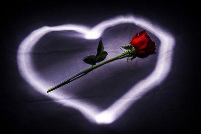Ljubavne Slike: Crvena ruža kao poklon za osmi mart