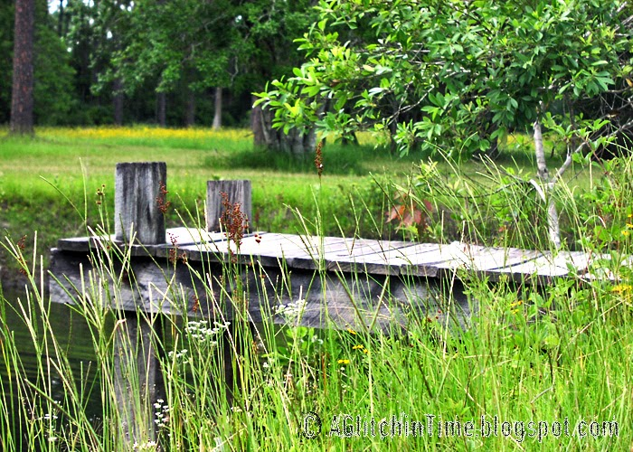 Weathered dock on our pond.