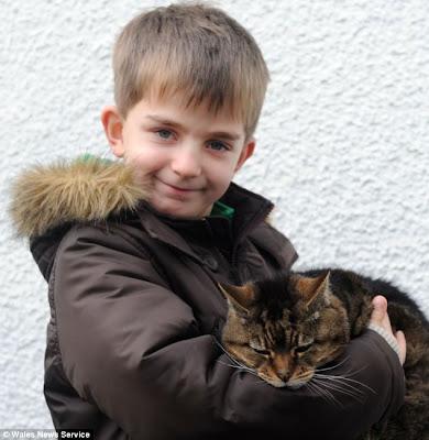 Rekor kucing Tertua di dunia