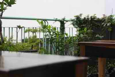 Ghế Gỗ Café - Một lần thử uống cà phê trứng ở Sài Gòn