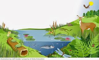 ekosistem.jpg