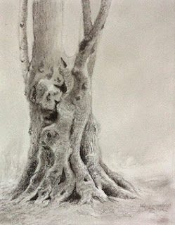 step 3, creating a charcoal sketching of a tree by Manju Panchal