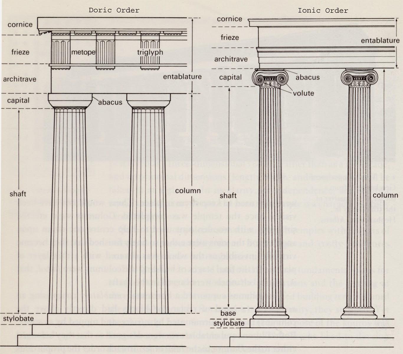 Vertebral Column Diagram