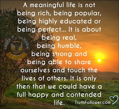 Meaningful Life Quotes Alluring Quotes About Meaningful Life