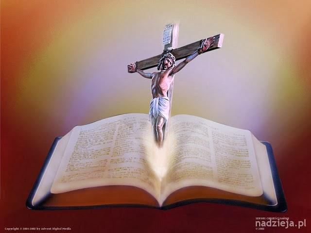 Ler a Bíblia e encontrar respostas para a vida