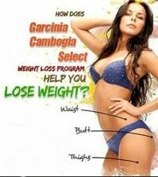 Garcinia Cambogia Work