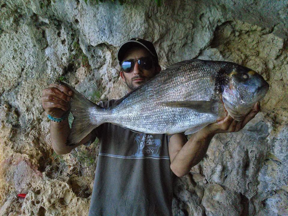 Dourada ao Rockfishing