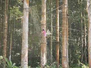 Treetop Adventure Bedugul