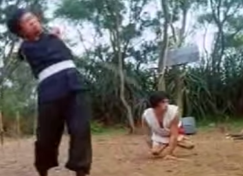 Maestros del Kung Fu Lisiados