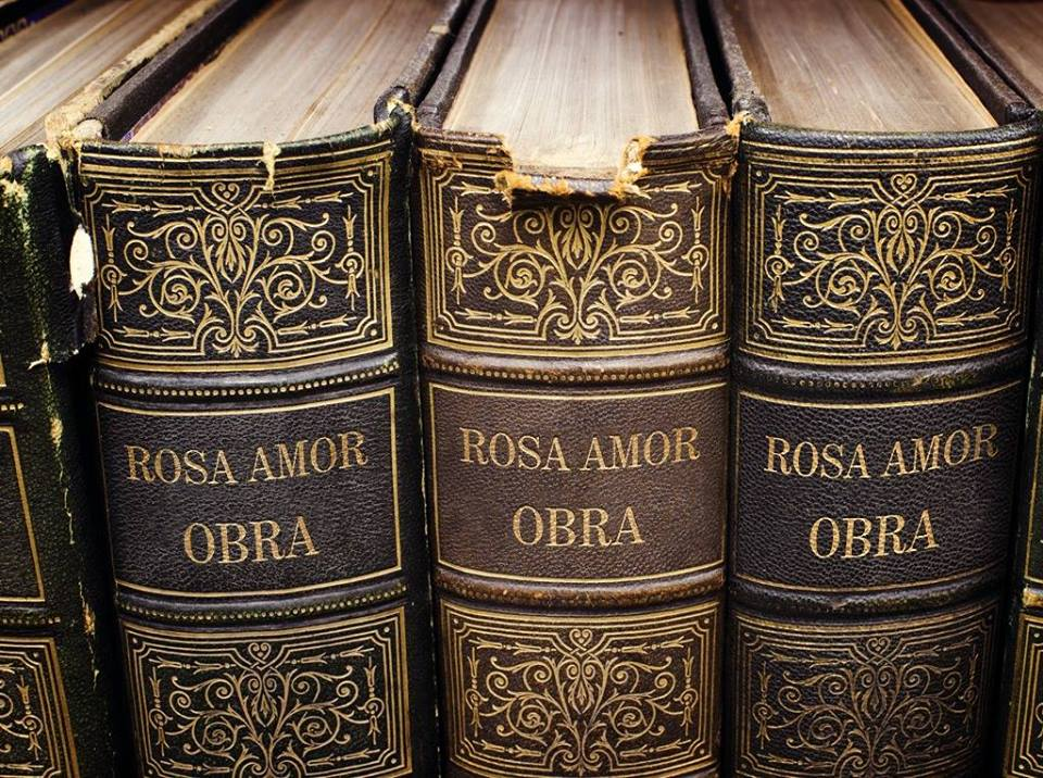 El Blog de Rosa Amor del Olmo