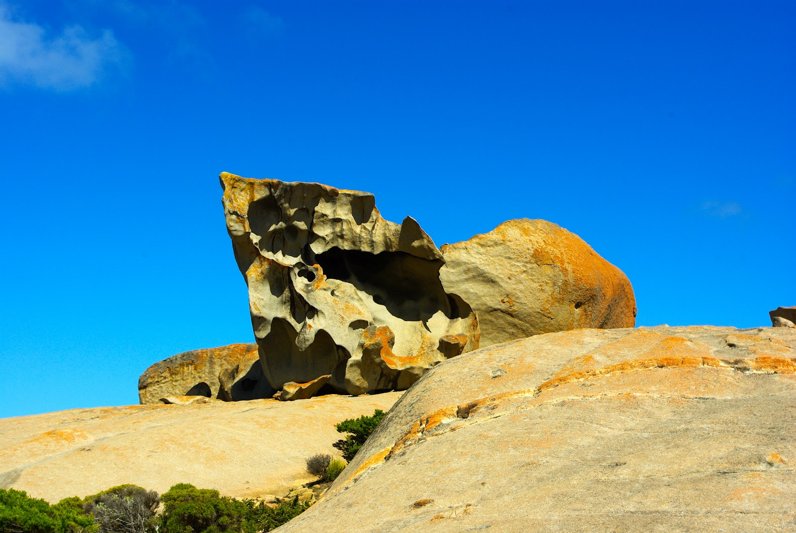 Tomtom nana en australie kangaroo island for Portent tomtom
