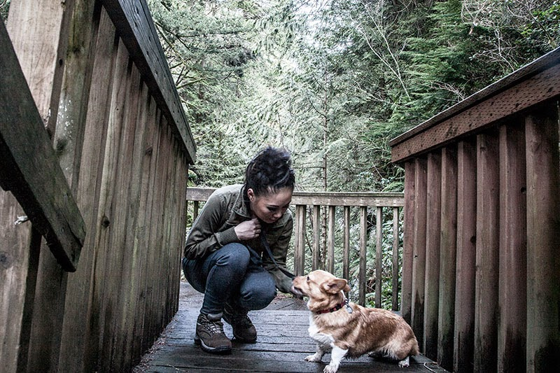 Umi the corgi Twin Falls Hike in Washington State