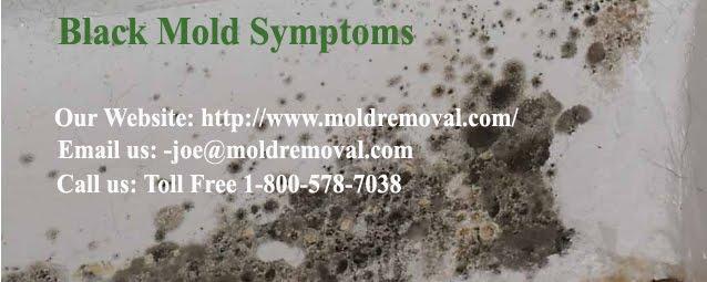 mold symptoms what are dangerous toxic black mold symptoms. Black Bedroom Furniture Sets. Home Design Ideas