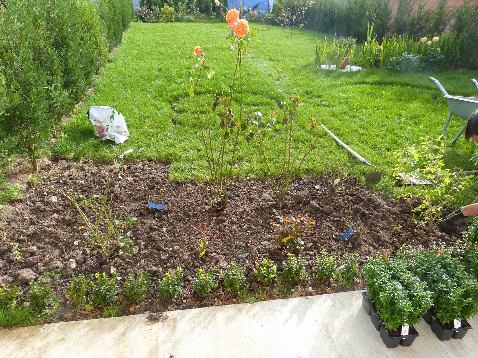Un jardin des fleurs plantations for Plantations jardin
