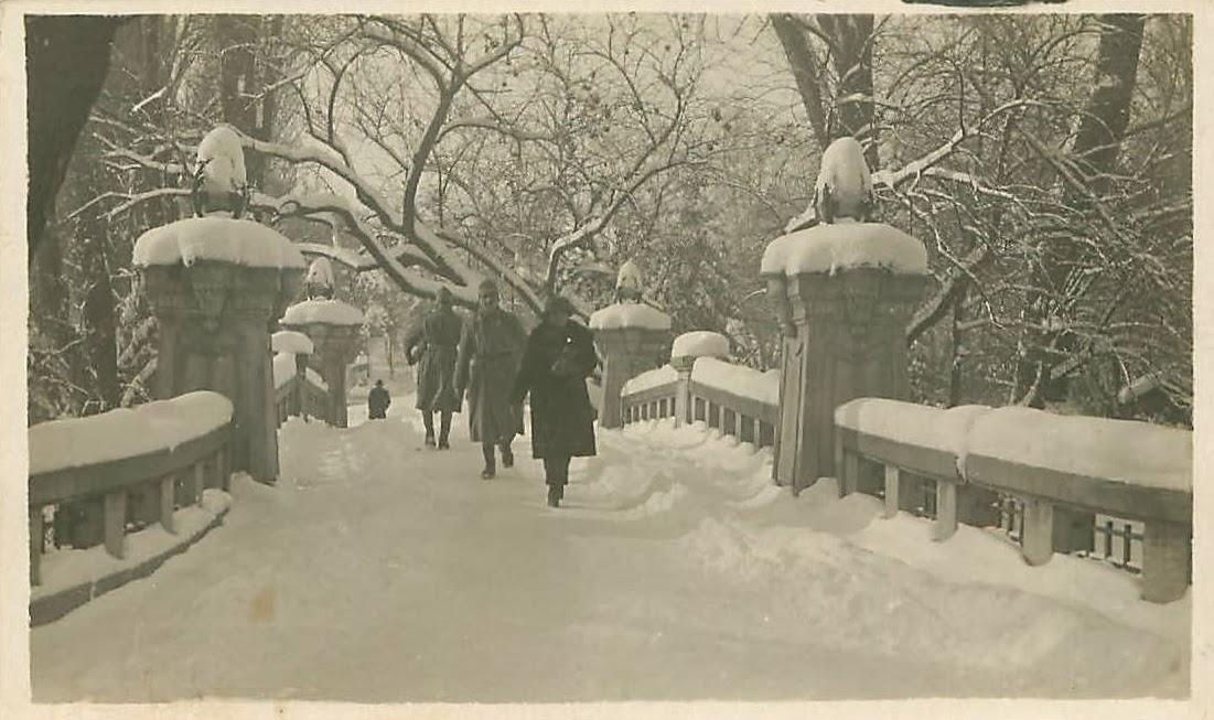 Pod din Cismigiu iarna