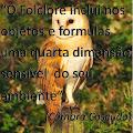 O FOLCLORE...