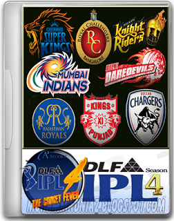 DLF IPL 4 Cricket Fever Game