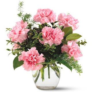 Order a Vase of Pink Carnations
