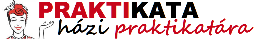Hzi praktika