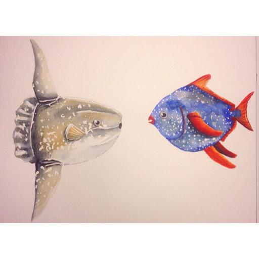 外溫的月魚 (翻車魚) 與內溫的月魚