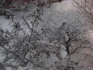 kar manzaraları