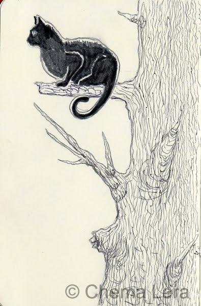 Chema Lera y su gato por libre