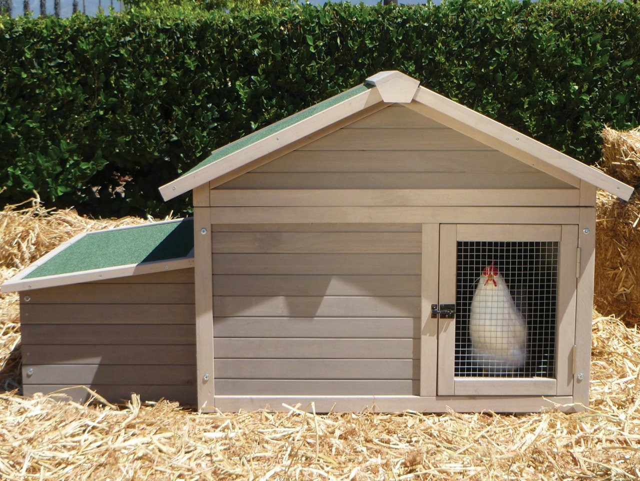 Barn shaped chicken coop build your own chicken coop for How to build a chicken hutch
