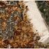 மூட்டைப் பூச்சிகளுக்கு பிடித்த நிறங்கள் எவை?