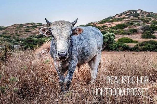 Realistic HDR Lightroom Preset