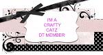 DT Member