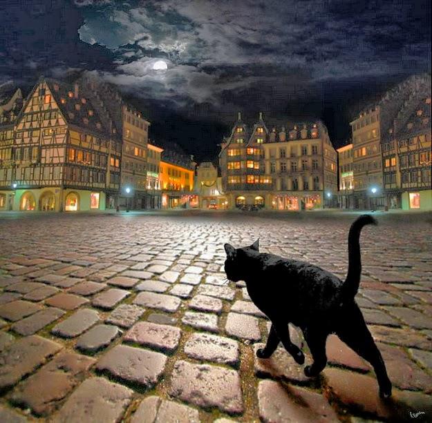 De noche todos los gatos son pardos
