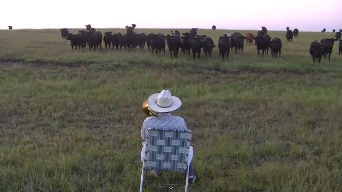Derek Klingenberg joue du trombone pour appeler ses vaches