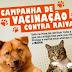 Secretaria de Saúde de Limoeiro dá inicio a campanha anti-rábica 2014