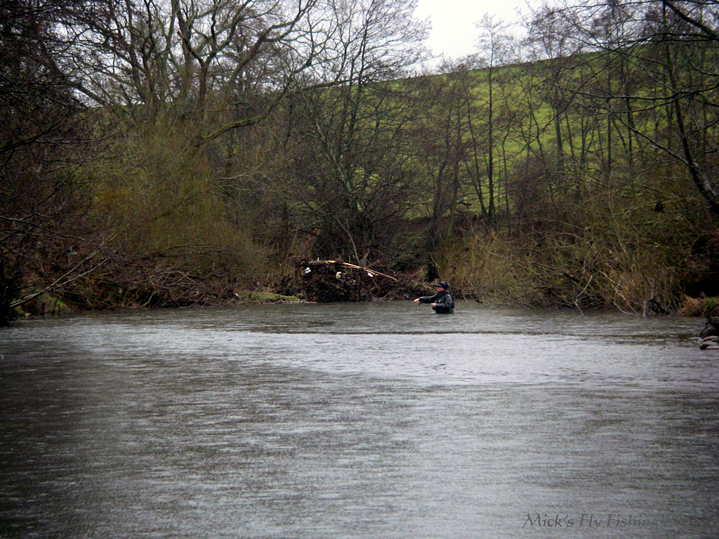 Mick 39 s fly fishing diary rising river woes for Rising fly fishing