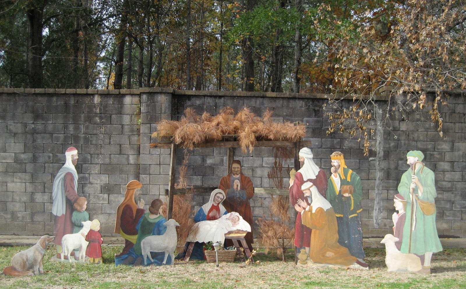 Outdoor christmas yard nativity scene casually