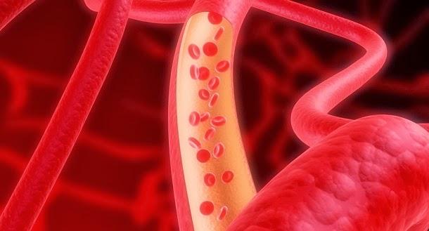 A verdade sobre o colesterol