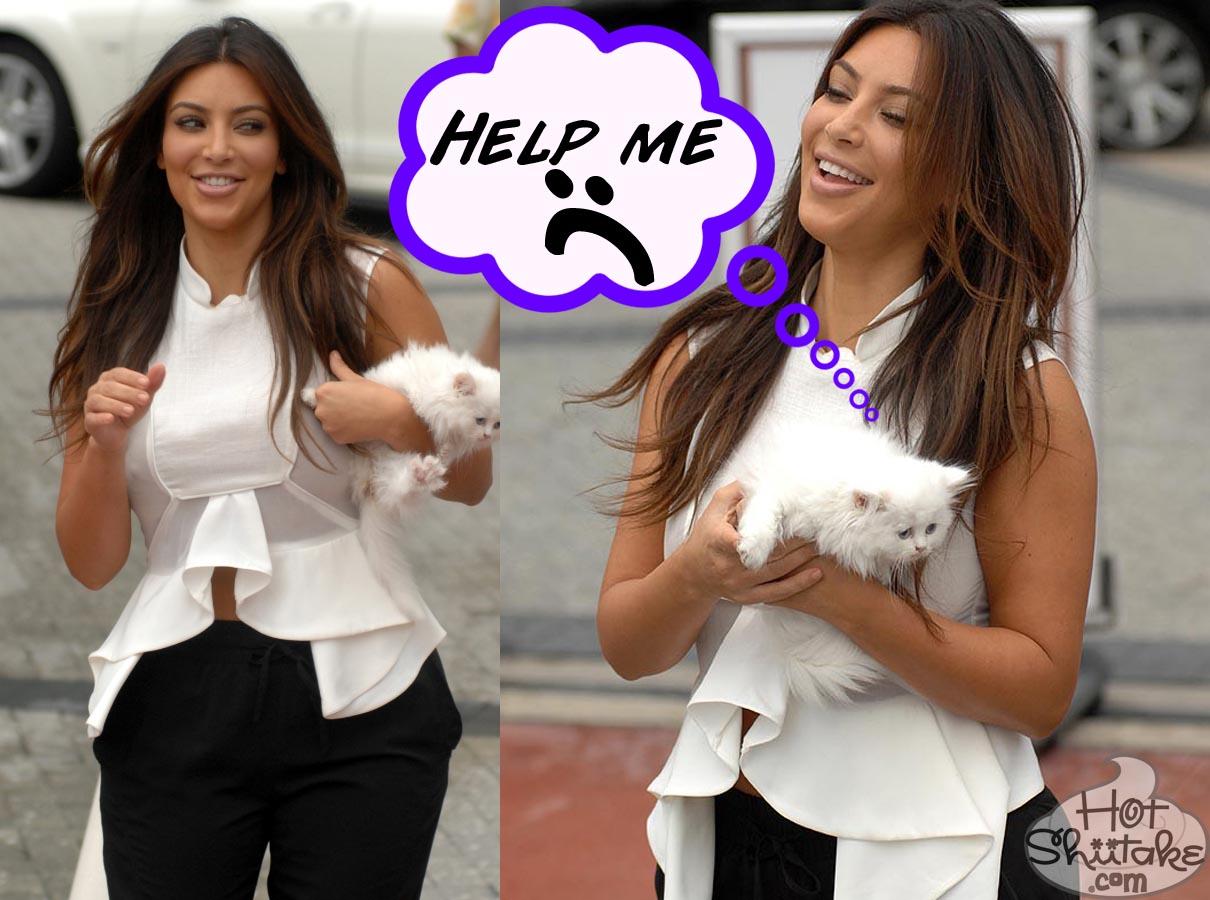 Kim Kardashian Cat Depressed