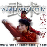 WUSHU ONE FAMILY