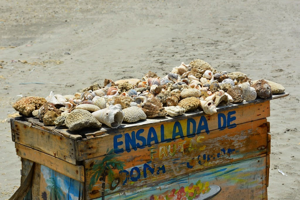 Bocagrande Beach Cartagena shells