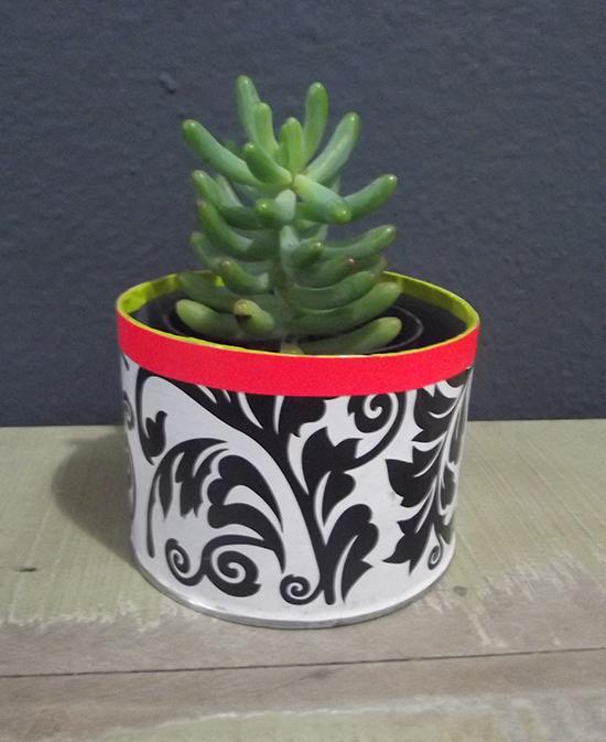 vaso de planta, vasinho, suculenta, reciclagem, reaproveitar lata, vaso reciclado, embalagem recilada