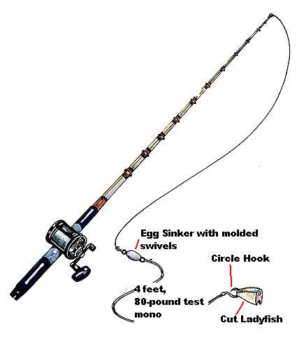 Sappo fishing club fishing rigs for Saltwater rigs bottom fishing