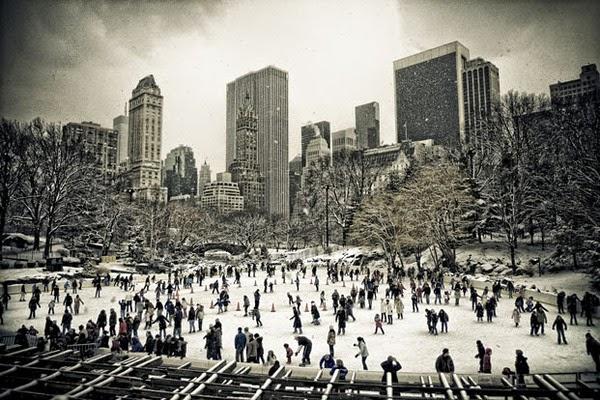 Rinze van Brug - New York Snow Photography