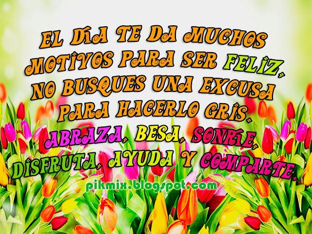 Motivos para ser feliz ~ Tarjetitas para facebook ~ Tulipanes