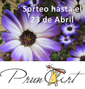 Sorteo Prunart
