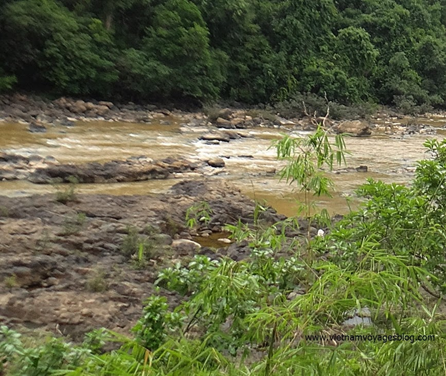 Forêt de Nam Cat Tien, Dong Nai