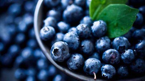 8 Buah-Buahan dengan Kandungan Antioksidan Terbanyak di Dunia: Blueberry
