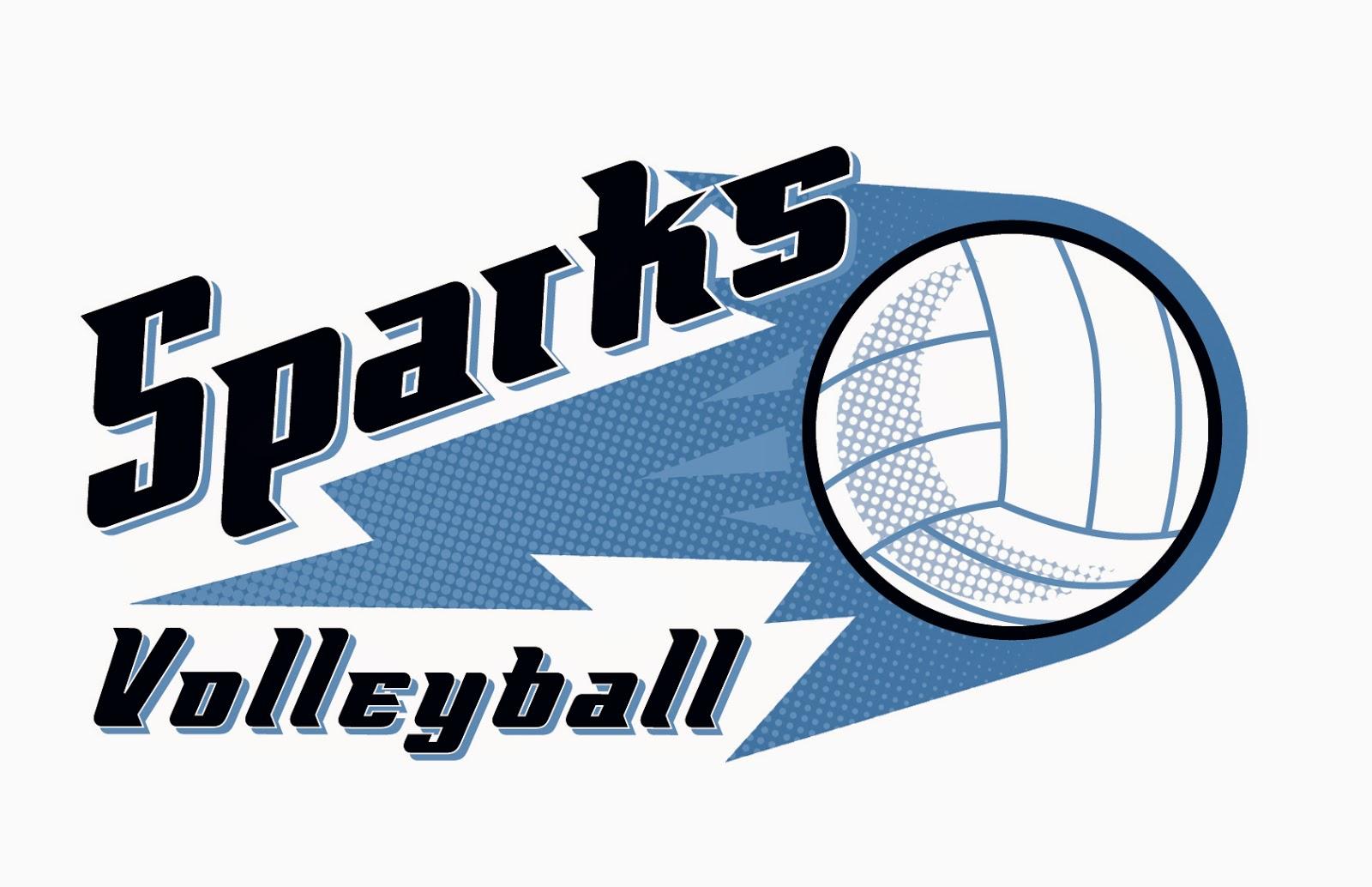 Volleyball team logo design