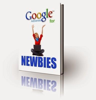 Google Adsense Earnings for Newbie